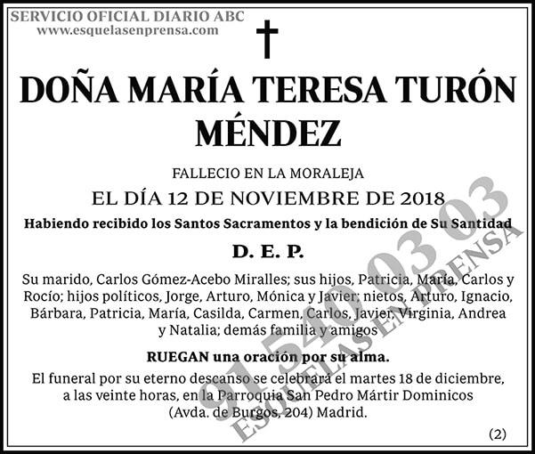 María Teresa Turón Méndez